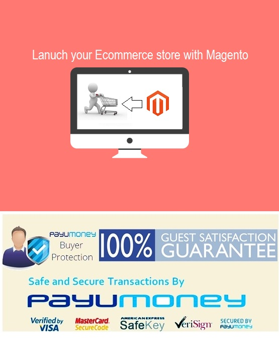 how to create multiple website in magento