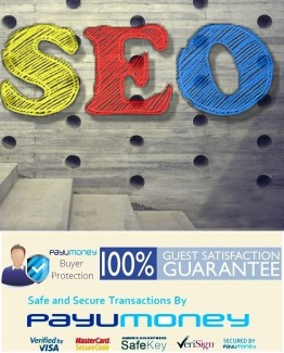 affordable seo company india,Google,seo,artist,Delhi,mumbai,India,low,price,Africa