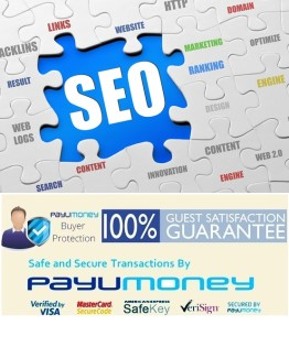 seo consulting services,Google,seo,doctors,Delhi,mumbai,India,low,price,Africa