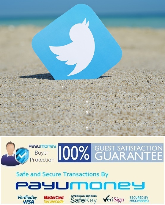 Advertising on Twitter,twitter,promotion,small,business,Delhi,mumbai,India,low,price,Africa