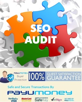 seo audit services,website,seo,audit,Delhi,mumbai,India,low,price,Africa