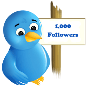 Where can you buy twitter followers in India