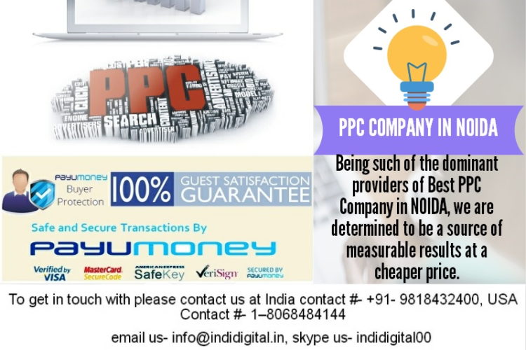 Which is the best PPC Company in Noida