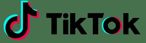 TikTok advertising, TikTok, advertising, TikTok app, TikTok marketing, Digital Strategy, Influencer, brand reputation, Musical.ly, Hashtag challenge, video clasps, GIF, advertising techniques, marketing